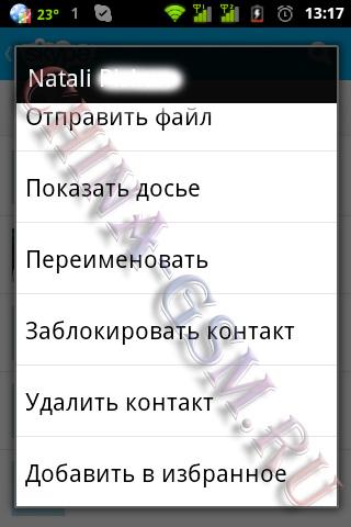 Прикрепленное изображение: Skype 09.jpg